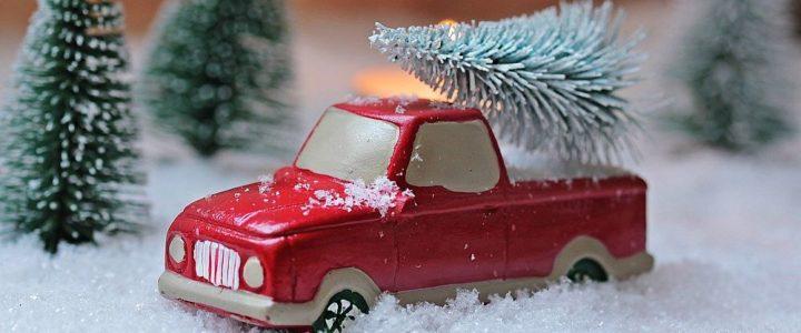 Weihnachtsbaumaktion 2020