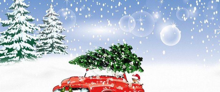 Weihnachtsbaumaktion 2021